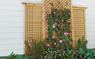 Шпалеры для вьющихся и прочих растений. 15 фото.