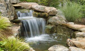 Пруд и водопад на даче своими руками