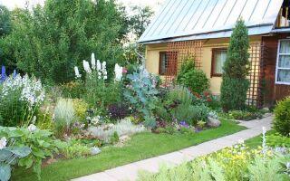 Ландшафтный дизайн на 6 сотках, или Огороды выходят из моды