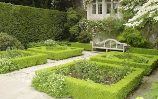 Тонкости ландшафтного дизайна сада