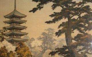 Японский сад: фото, видео