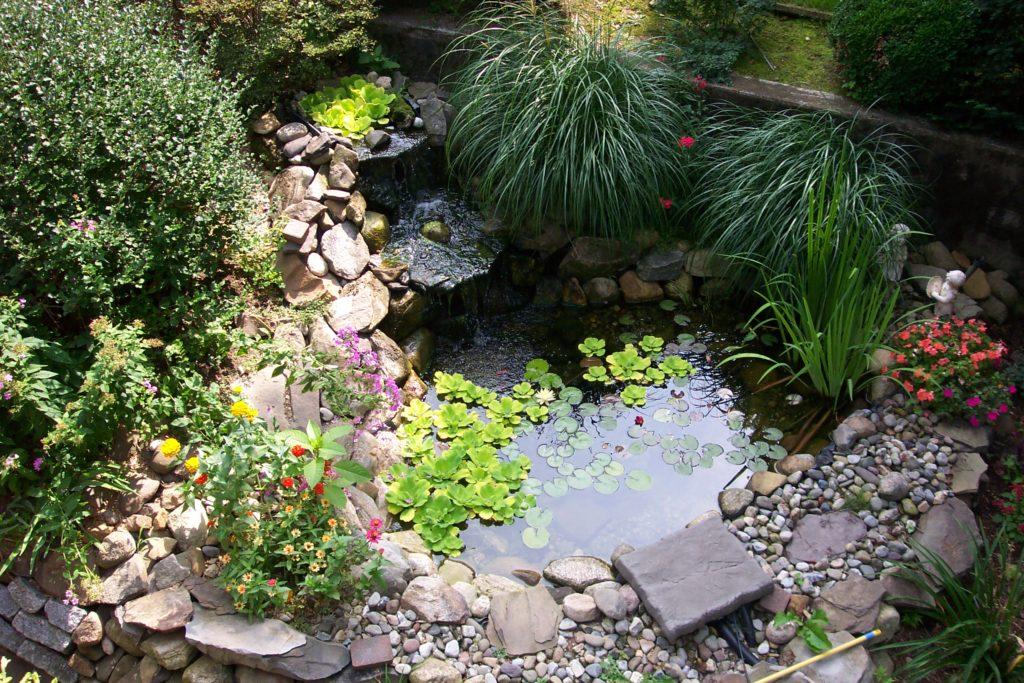 Мини-пруд в ландшафтном дизайне маленького участка