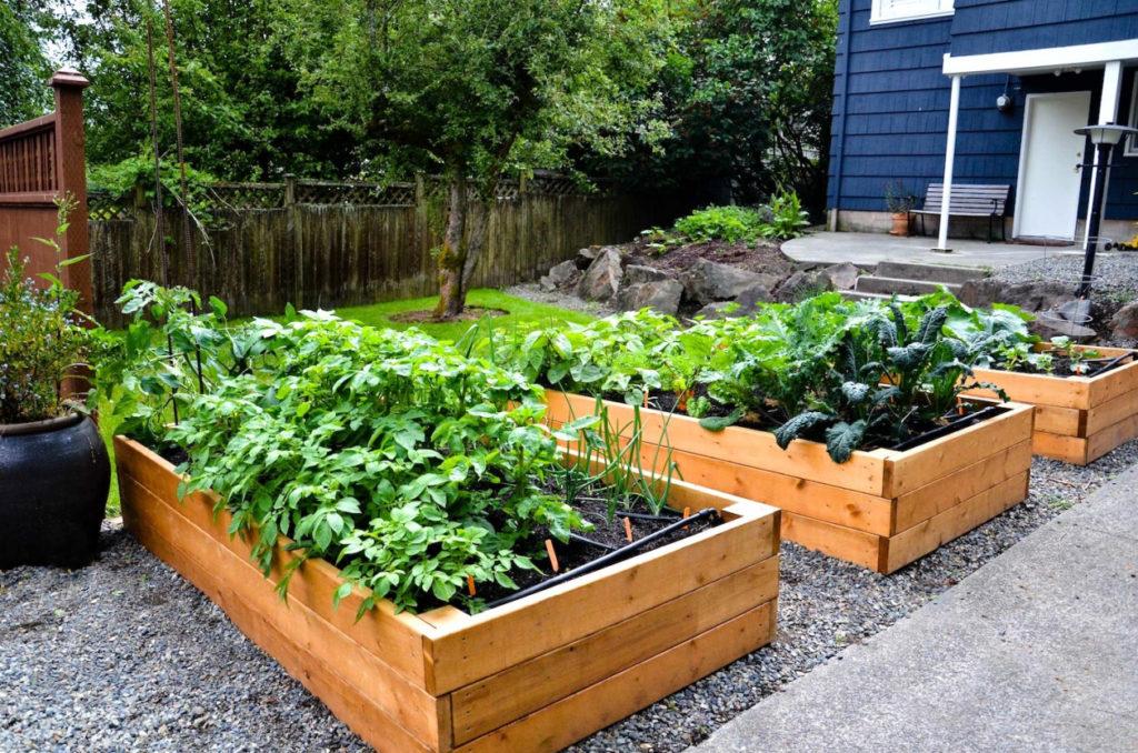 Vegetable Garden Design Raised Beds 17 Raised Garden Bed Ideas