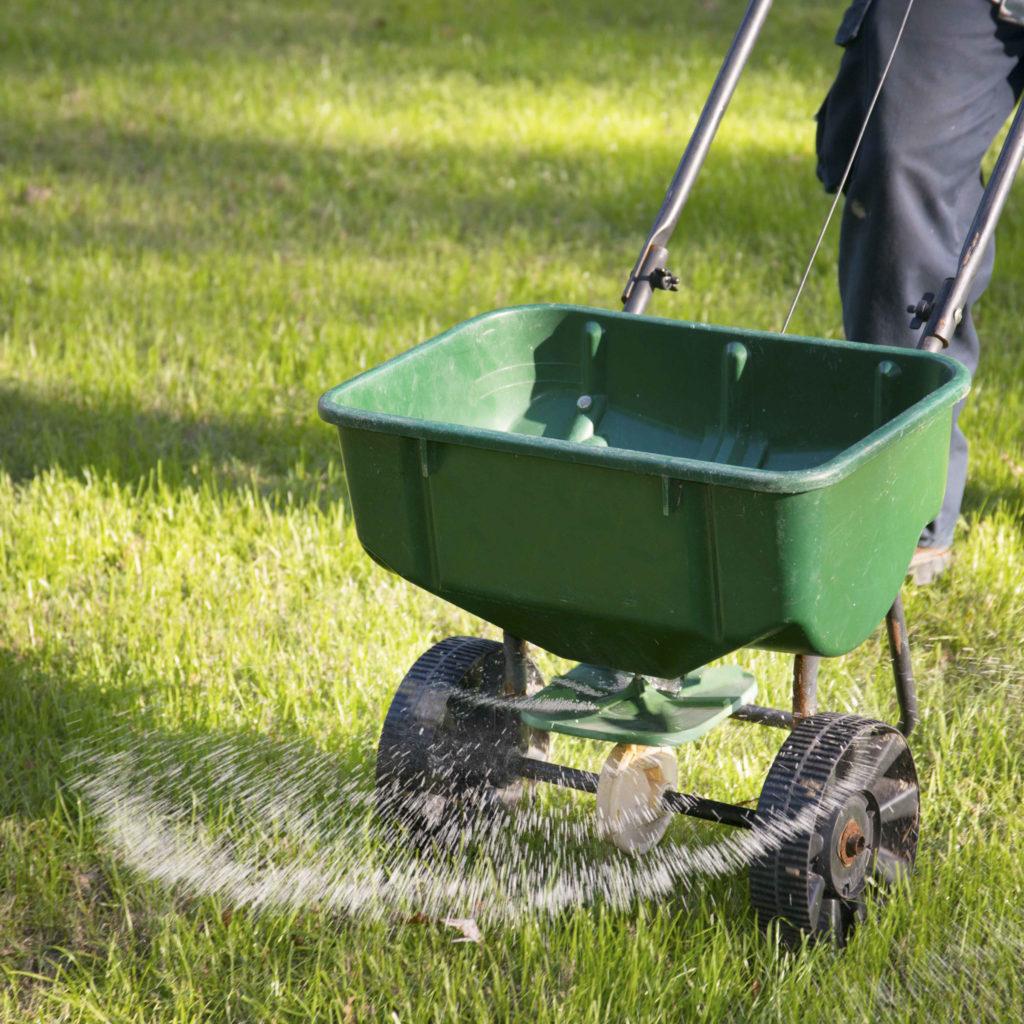 Вносим удобрения для газона