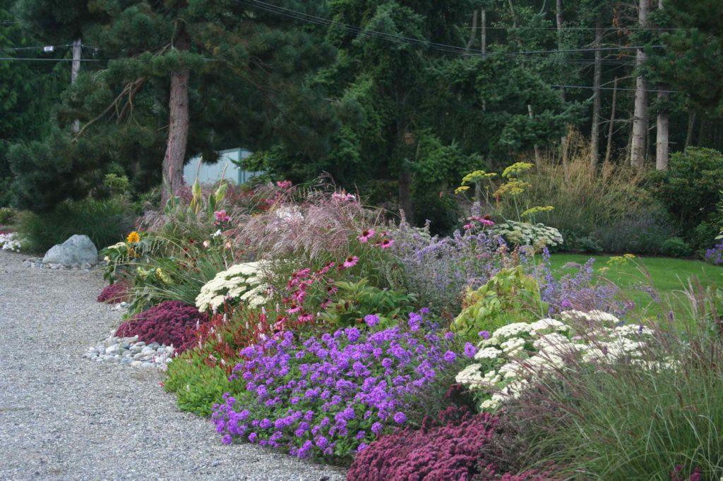 Цветы сажаем группами