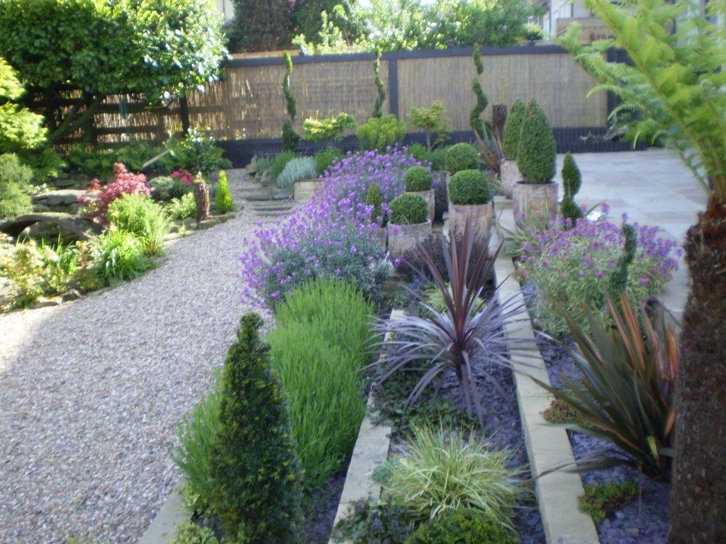 Растения в современном саду