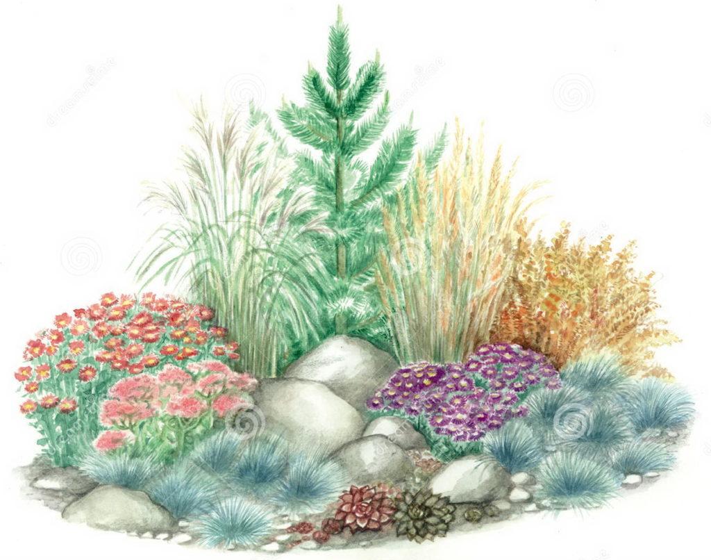 Экиз композиции растений