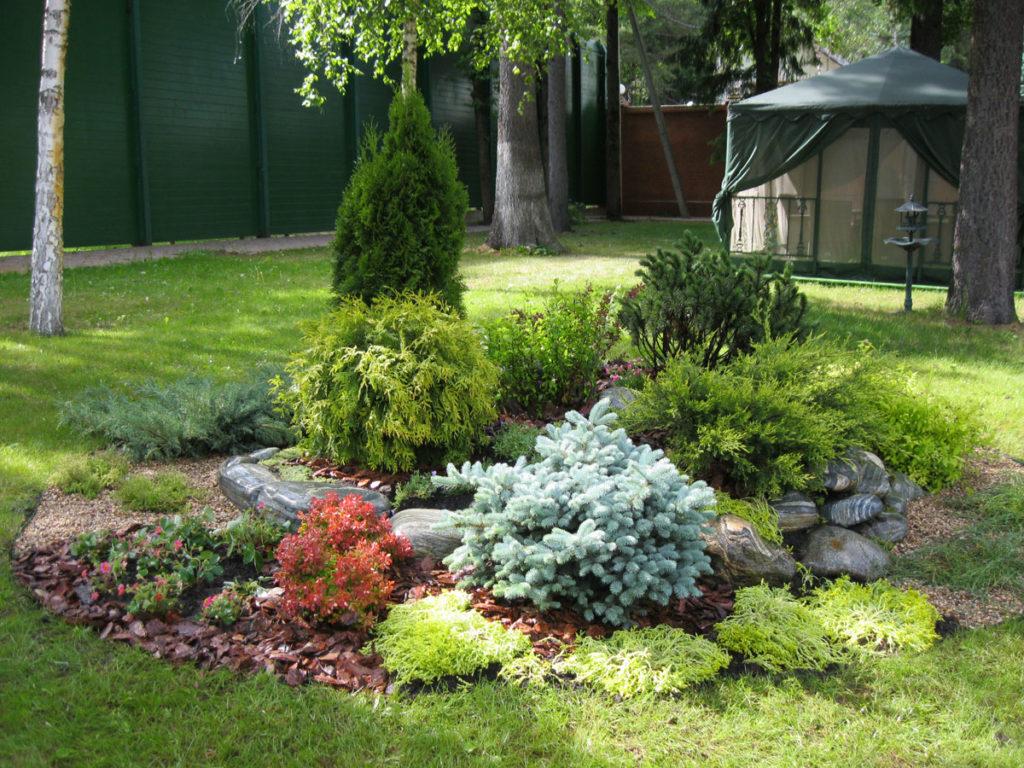 Пример композиции растений