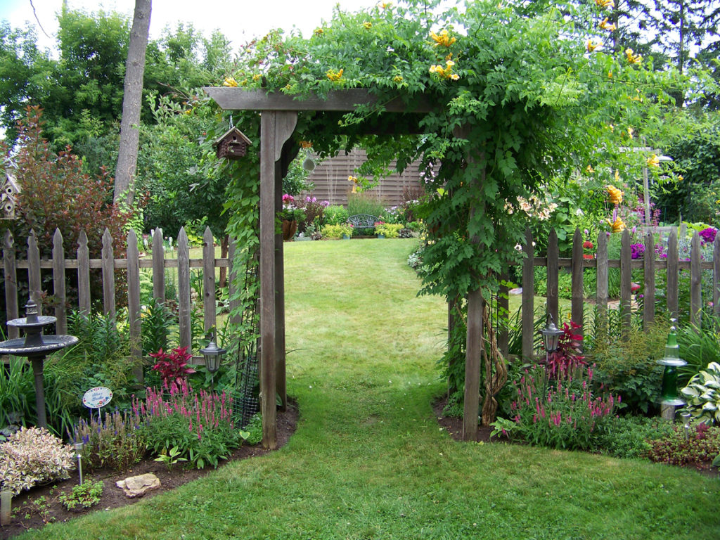Декорирование ворот растениями