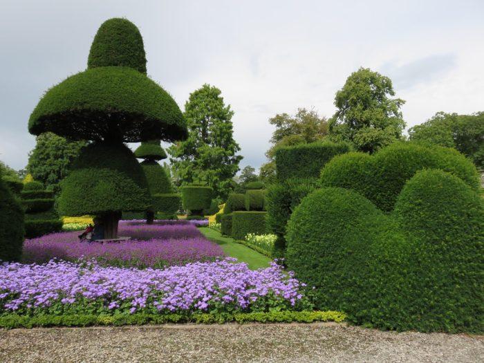 Топиарии в саду