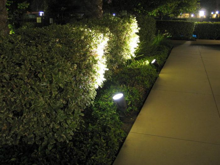 Освещение кустов